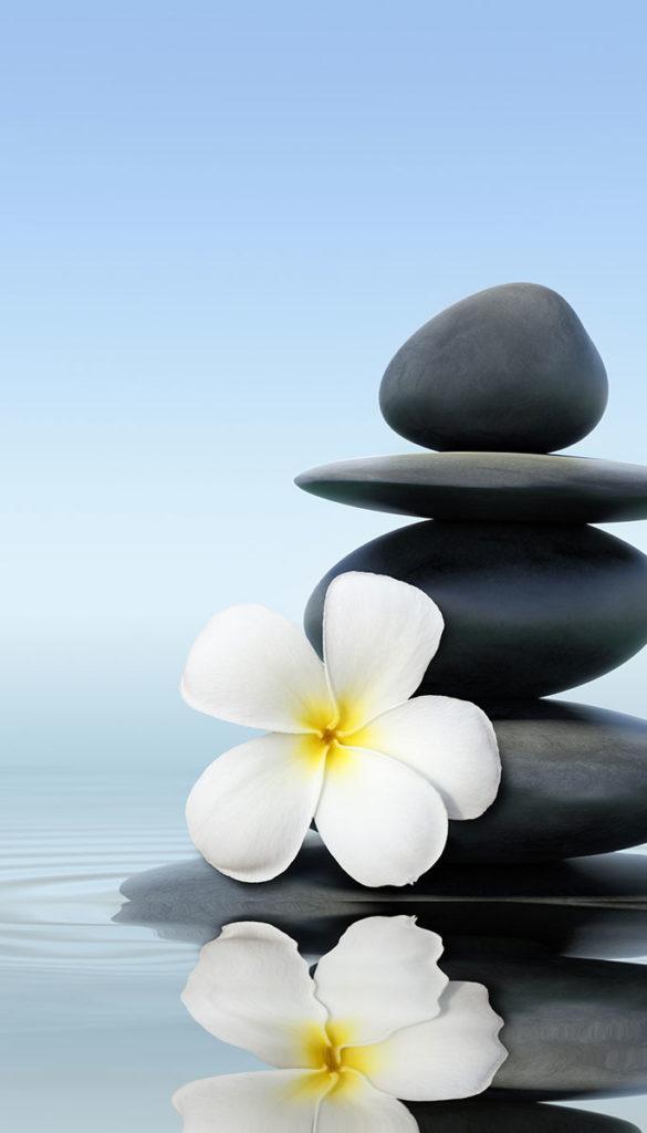 Frangapini and Zen Stones